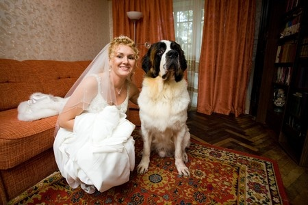 A Bride and Her Dog